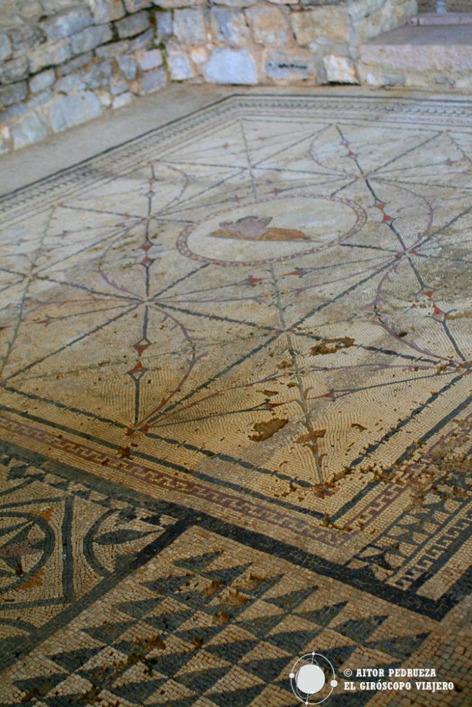 Mosaicos de la villa romana de Risan